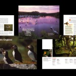 Birding Sites Guide, National Geographic Society