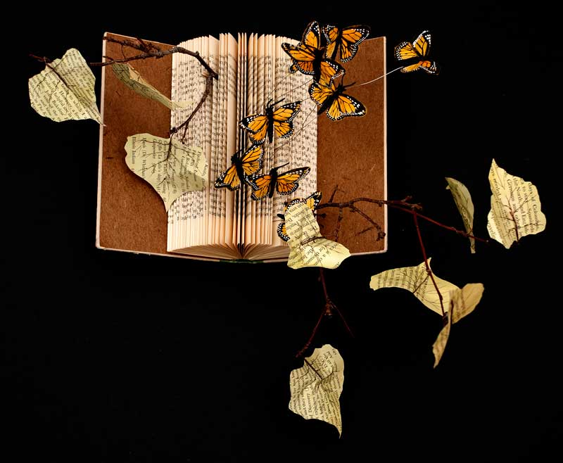 Great Journey, altered book