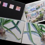 Watercolor Sketchbooks