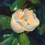 Magnolia Blossom, original watercolor