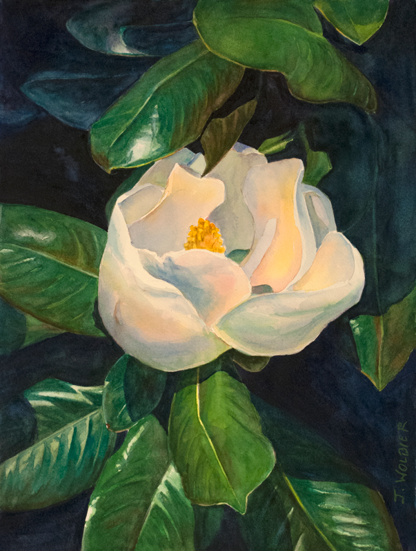 Magnolia Blossom, original watercolor