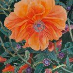 Summer Poppy, original watercolor