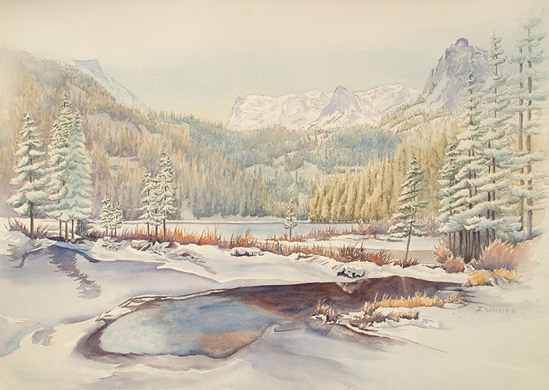 Fern Lake is pen and ink with watercolor