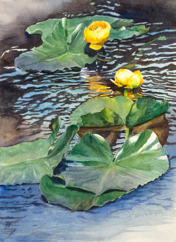 Nymph Lake Water Lilies is a pen and ink with watercolor