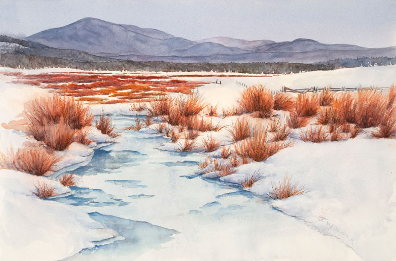 Winter Willows is a pen and ink with watercolor