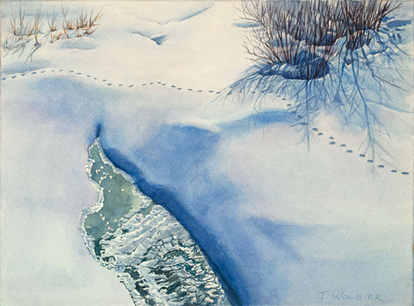 Coyote Tracks is a pen and ink with watercolor.